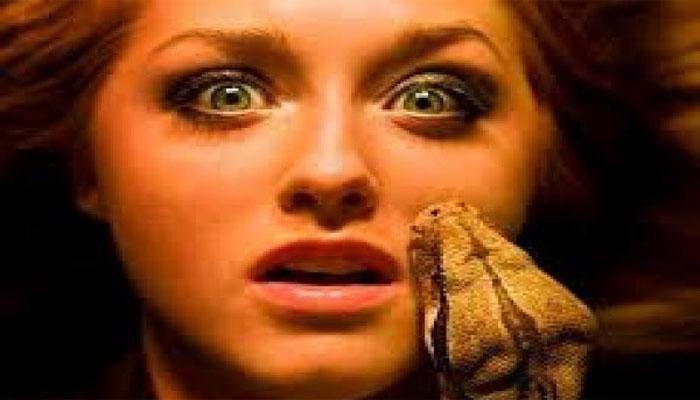 Nằm mơ thấy bị rắn cắn báo hiệu nhiều con số may mắn
